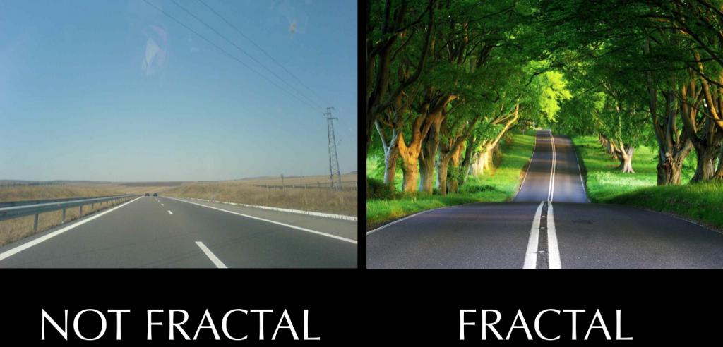 Fractal vs non fractal