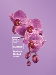 2014 colour of the year Radiant orchid