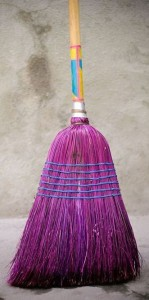 Radiant orchid broom