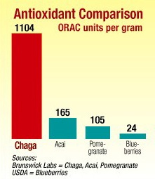 Chaga mushrooms and antioxidants comparison table
