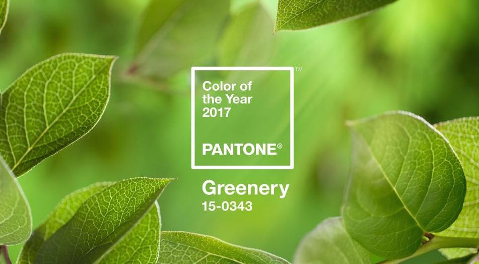 Pantone colour of the year 2017 greenery or kale