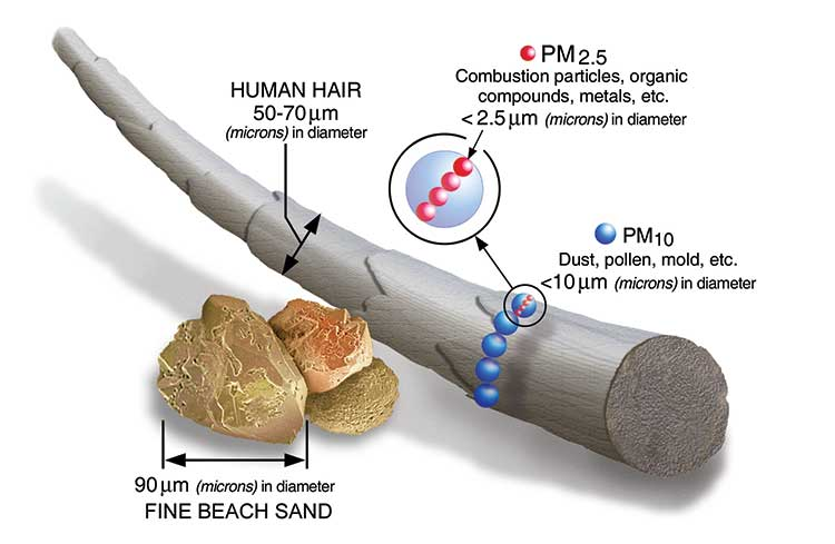 PM 2.5 particles and human hair