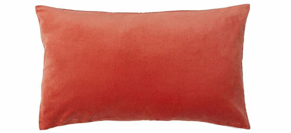 Coral cushion 'fights'